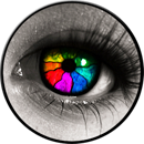 eye-tracking couleurs trinity advise