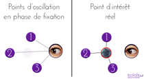 points de fixation occulaire trinity advise